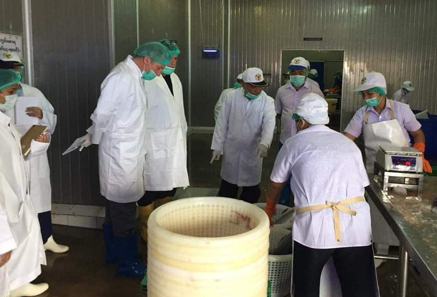 EU-FVO Mission Inspection  Myanmar Fish Processing sector
